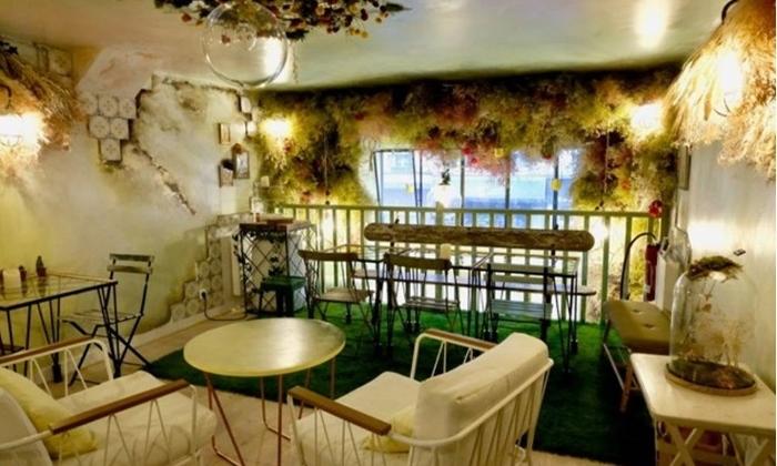 Café jardin 50€